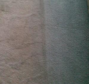 Jak nejlépe vyčistit koberec